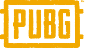 pubg logo 51 300x171 - PUBG Logo