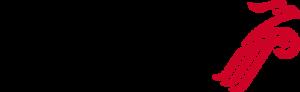 shenzhen airlines logo 51 300x92 - Shenzhen Airlines Logo