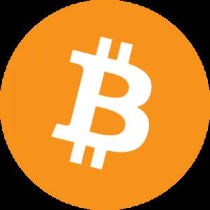 bitcoin logo 5 11 1 300x300 - Bitcoin Logo
